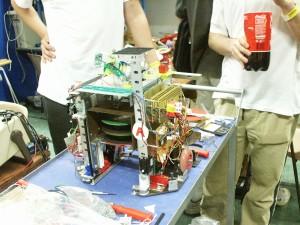 2003 photo 7
